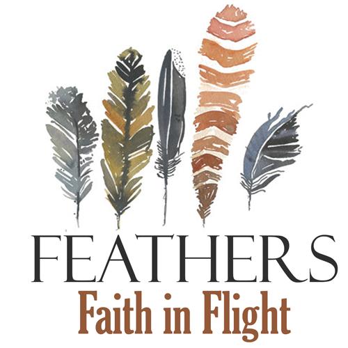FeathersiTunes2-500