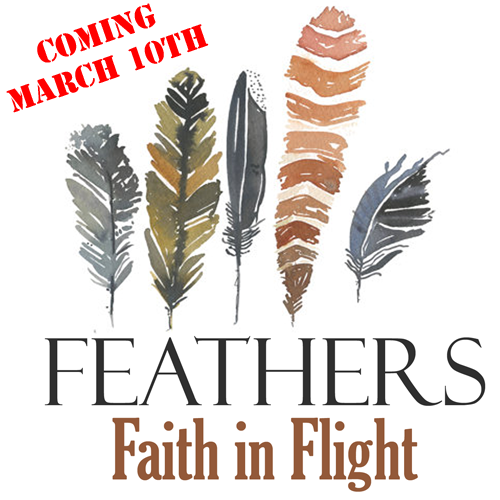 FeathersiTunes2-500-coming-
