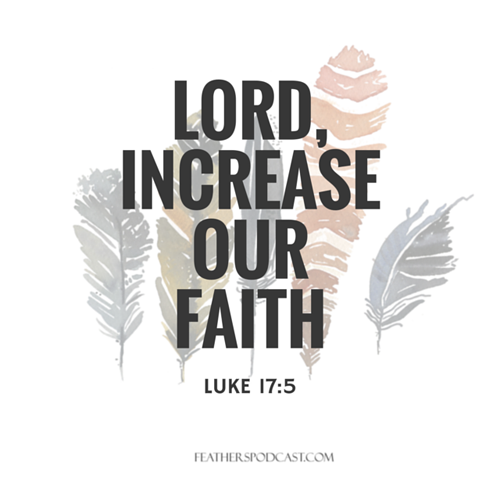 Feathers-Increase-Our-Faith