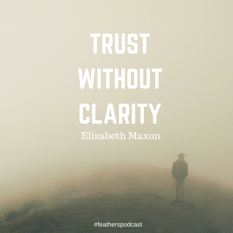 TrustWithoutClarity